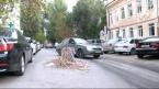 """""""Кошмар"""" на улице Пушкина. Видеосюжет"""